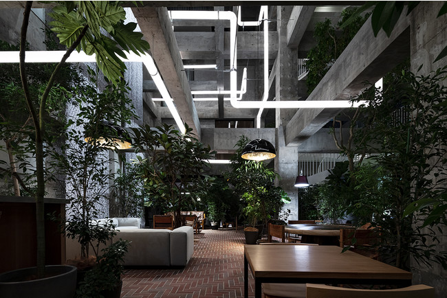 白井屋ホテル the LOUNGE ©️Shinya Kigure