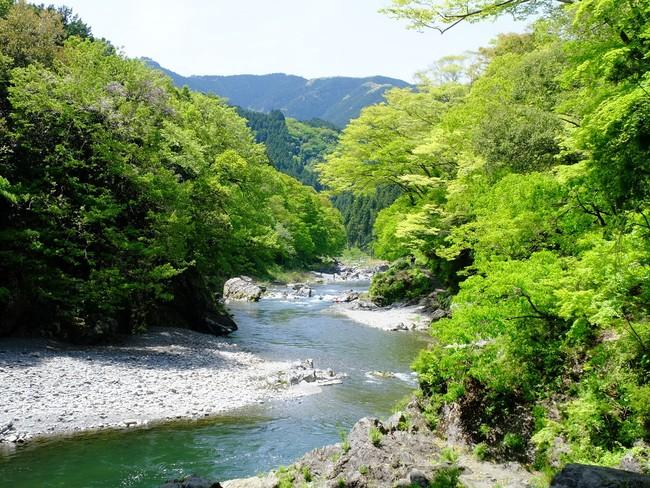 豊かな自然が広がる御岳渓谷