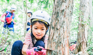 お子さんと一緒に森へ入って楽しみましょう!